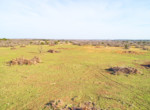 DJI_0015_6_7_8_9_easyHDR-Outdoor Default GH5 and Drone