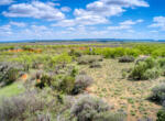 Livermann-Sweetwater-0275_hdr2_4x