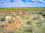 Livermann-Sweetwater-0306_hdr2_4x